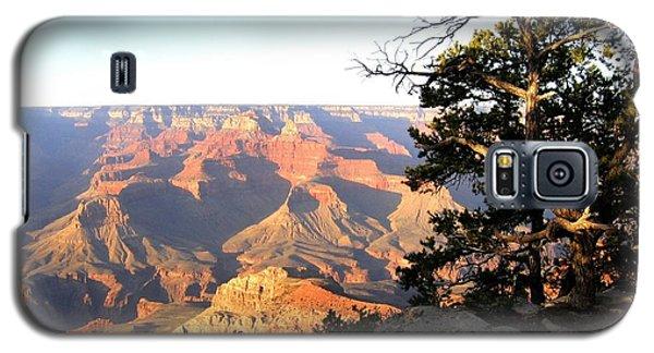 Grand Canyon 63 Galaxy S5 Case