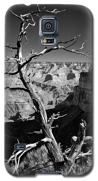 Grand Canyon Bw Galaxy S5 Case