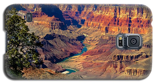 Grand Canyon Sunset Galaxy S5 Case by Robert Bales