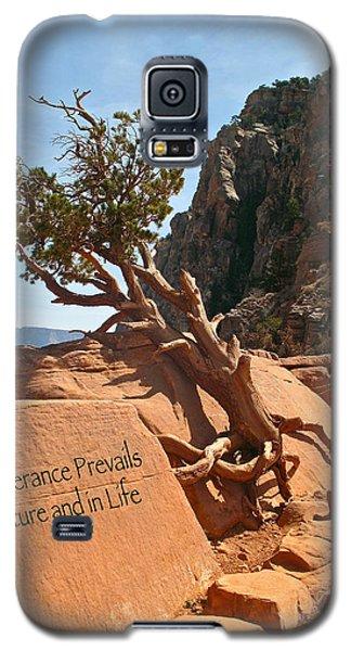 Grand Canyon Survivor Galaxy S5 Case by Kathleen Scanlan
