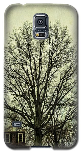 Grand Old Tree Galaxy S5 Case