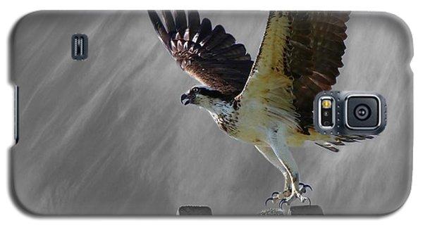Grand Ole Osprey Galaxy S5 Case