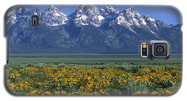 Grand Teton Summer Galaxy S5 Case