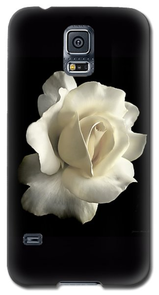 Grandeur Ivory Rose Flower Galaxy S5 Case