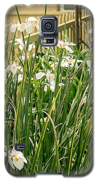 Galaxy S5 Case featuring the photograph Grandpa's Lilies by Jan Davies