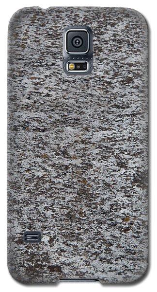 Granite Galaxy S5 Case