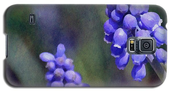 Grape Hyacinth  Galaxy S5 Case