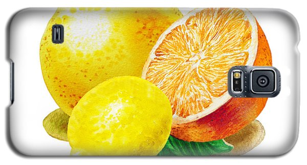 Galaxy S5 Case featuring the painting Grapefruit Lemon Orange by Irina Sztukowski