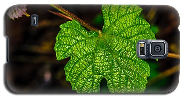 Grapes Of Rath Galaxy S5 Case