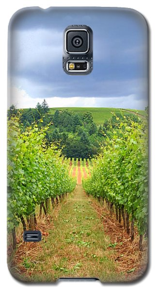 Galaxy S5 Case featuring the photograph Grapes Of Wrath by Debra Kaye McKrill