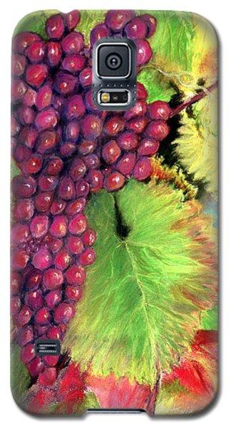 Grapes On Vine Pastel Galaxy S5 Case by Antonia Citrino