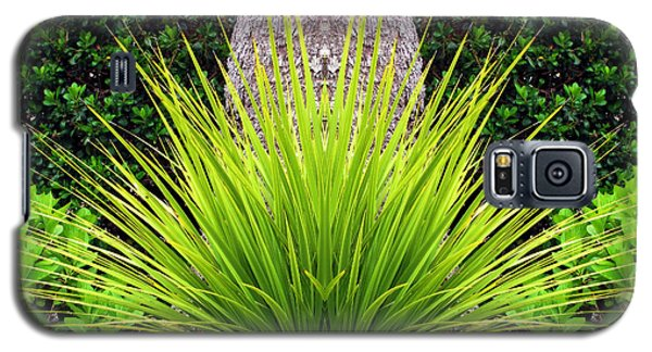 Galaxy S5 Case featuring the photograph Grass Burst by Katie Wing Vigil