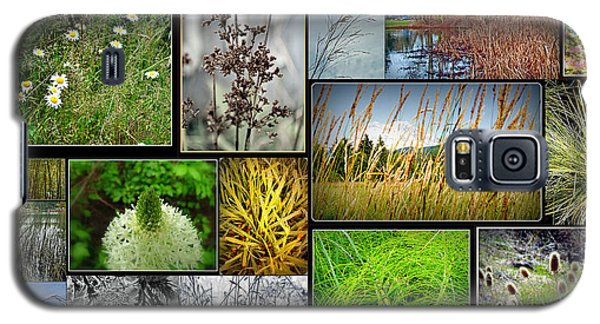 Grass Collage Variety Galaxy S5 Case by Tikvah's Hope