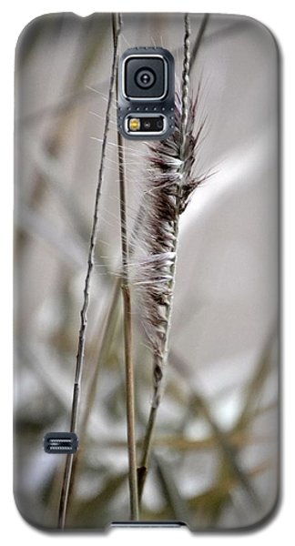 Grass Galaxy S5 Case