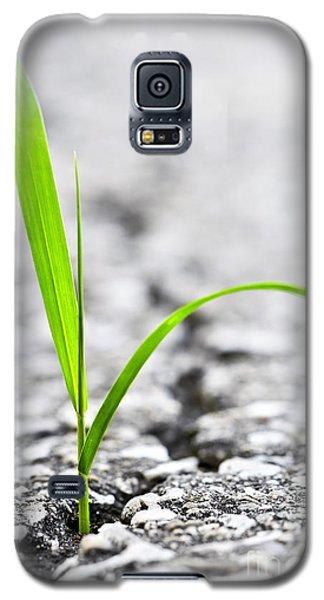 Grass In Asphalt Galaxy S5 Case