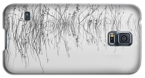 Grass In Lake Galaxy S5 Case