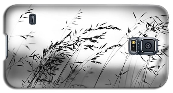 Grass On Mount Iwaki Galaxy S5 Case