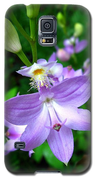 Galaxy S5 Case featuring the photograph Grass Pink Orchid by William Tanneberger