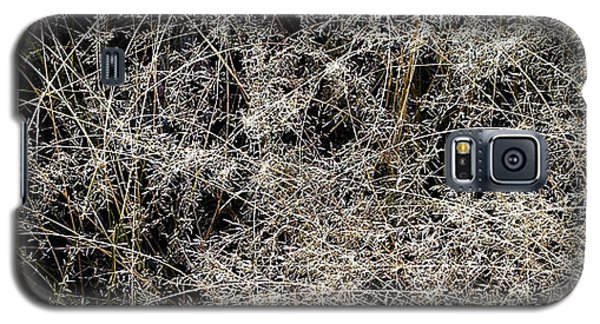 Grass Stalks Galaxy S5 Case