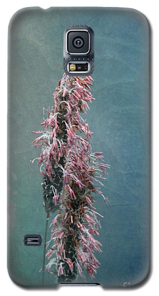 Grasses - Art By Nature Galaxy S5 Case by Liz  Alderdice