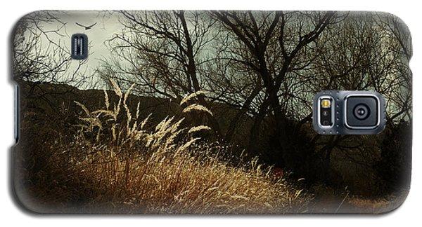 Grasses Of Winter Galaxy S5 Case by Karen Slagle