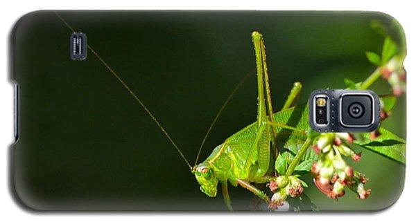 Grasshopper #1 Galaxy S5 Case