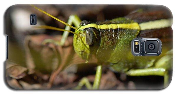 Galaxy S5 Case featuring the photograph Grasshopper by Karen Kersey