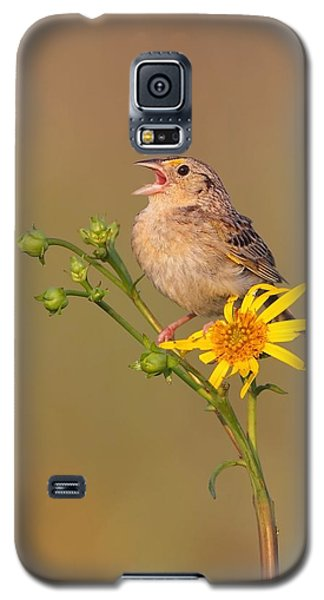 Galaxy S5 Case featuring the photograph Grasshopper Sparrow Singing by Daniel Behm