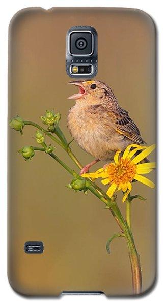 Grasshopper Sparrow Singing Galaxy S5 Case
