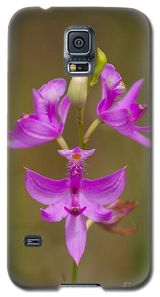 Grasspink #1 Galaxy S5 Case