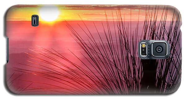 Galaxy S5 Case featuring the photograph Grasstree Sunset by Peta Thames
