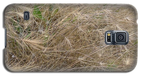 Grassy Abstract Galaxy S5 Case by Joel Deutsch