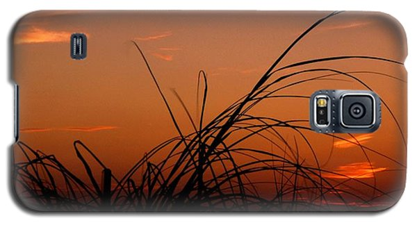 Galaxy S5 Case featuring the photograph Grassy After Glow by Richard Zentner