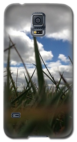 Galaxy S5 Case featuring the photograph Grassy Skies by Nikki McInnes