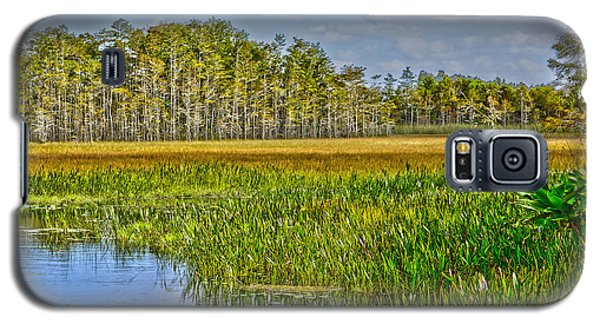 Grassy Waters Galaxy S5 Case