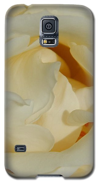 Grave Beauty Galaxy S5 Case