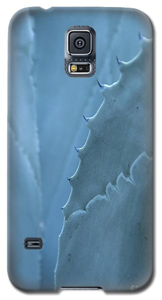 Gray-blue Patterns Galaxy S5 Case