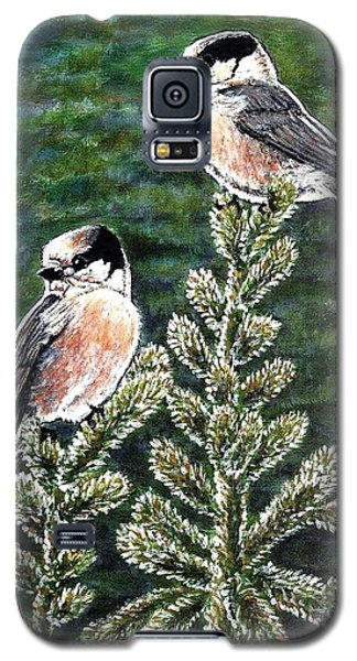 Galaxy S5 Case featuring the painting Gray Jays by VLee Watson