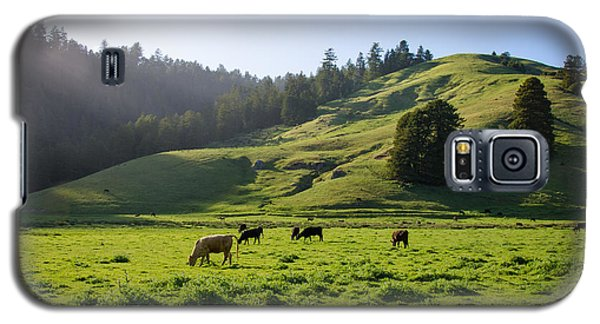 Grazing Hillside Galaxy S5 Case by CML Brown