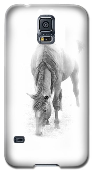 Grazing Galaxy S5 Case