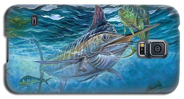 Great Blue And Mahi Mahi Underwater Galaxy S5 Case