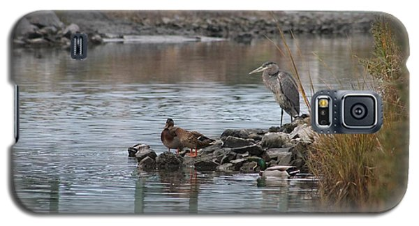 Great Blue Heron And Friends Galaxy S5 Case by Robert Banach