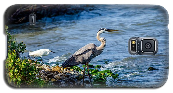 Great Blue Heron And Snowy Egret At Dinner Time Galaxy S5 Case