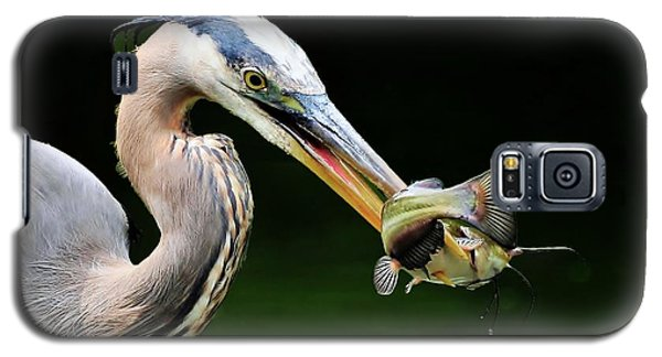 Galaxy S5 Case featuring the photograph Great Blue Heron And The Catfish by Kathy Baccari