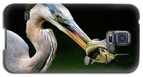 Great Blue Heron And The Catfish Galaxy S5 Case