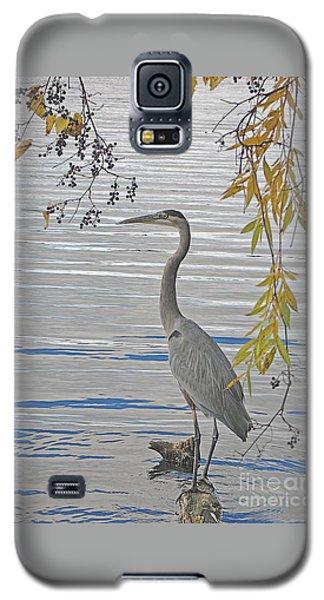 Great Blue Heron Galaxy S5 Case by Ann Horn