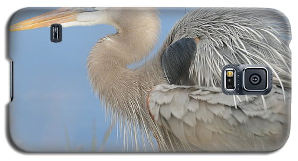 Galaxy S5 Case featuring the photograph Great Blue Heron by Bradford Martin