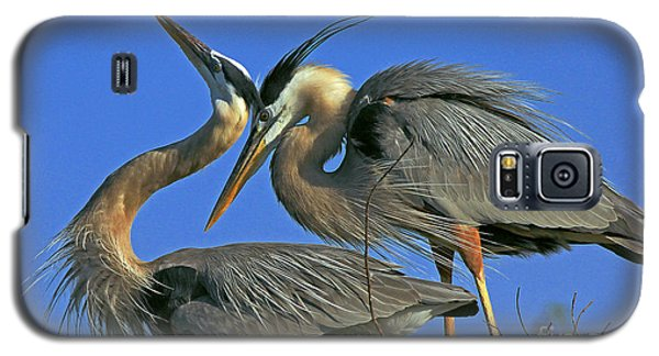 Great Blue Heron Courting Pair Galaxy S5 Case