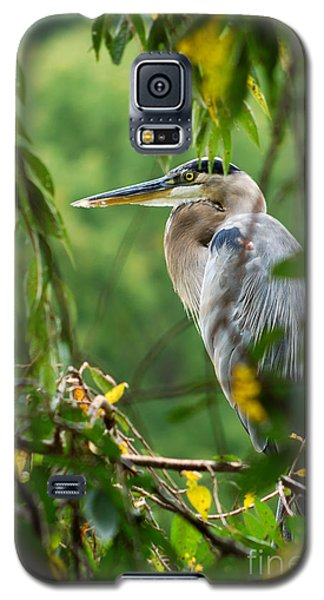 Galaxy S5 Case featuring the photograph Great Blue Heron by Eva Kaufman