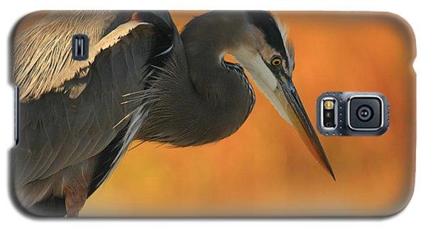 Great Blue Heron Focus Galaxy S5 Case